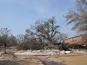 Dantzler House After Hurricane Katrina
